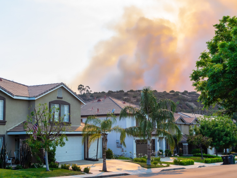 content_Windermere_Real_Estate_Blog_-_Wildfire.png